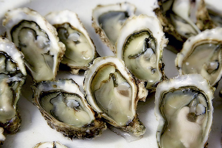 oysters for fast hair growth